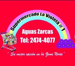 Logo VIOLETA #1_Baja